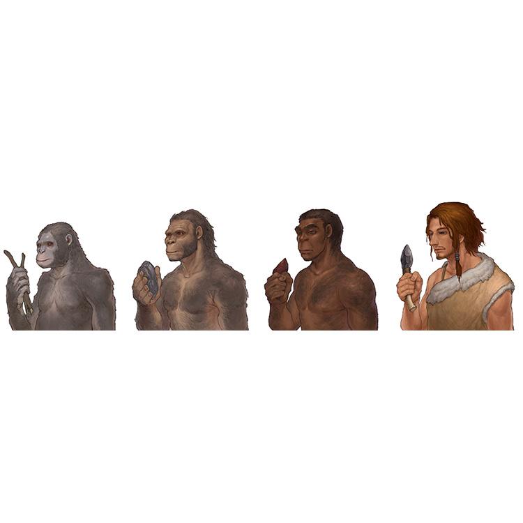 人類誕生 イメージ